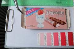 Bergung Yogurette_2