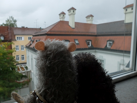 Regenwetter? Kein Problem, Sam und Manfred haben eine Idee!